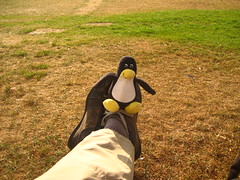 Tux and I relaxing at Jubilee gardens