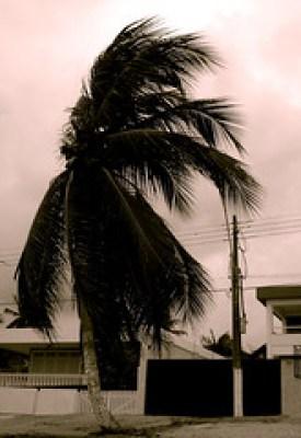 Escala dos ventos