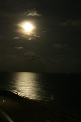 moonlight on the Gulf