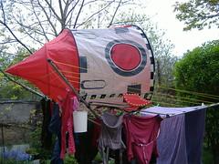 Spaceship in our garden