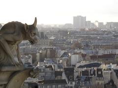 Notre Dame (40)