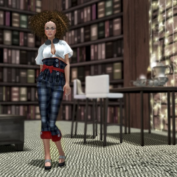 the quirky librarian