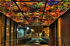 Glass Ceiling, Tacoma