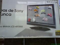 Conejitos multicolores de Sony Bravia en Chapela