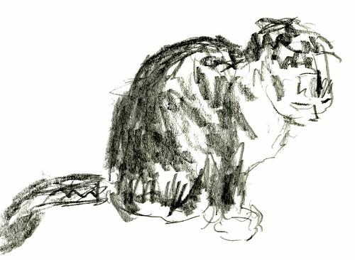 Cats, part 20
