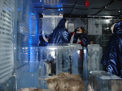 Absolut Ice Bar (14)