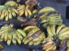 Guineos (bananas)