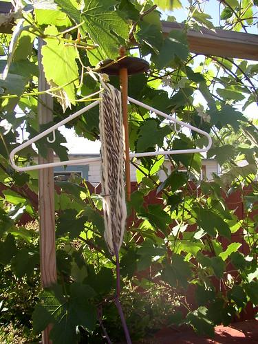 BFL Finn yarn drying p Color Fiber Festival