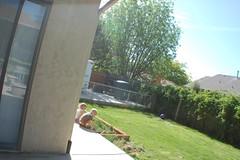 Peeking around the Side of the House