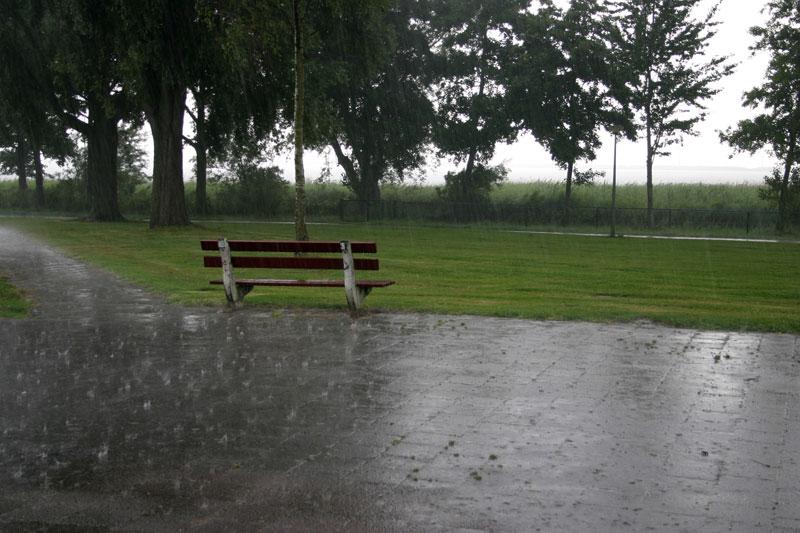 Regen-IMG_0769