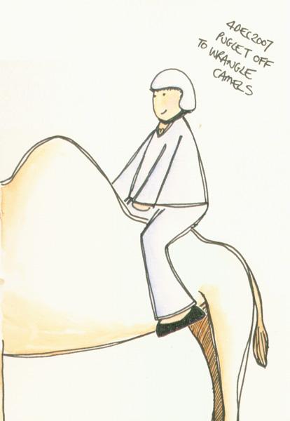 04dec2007_wrangle_camel