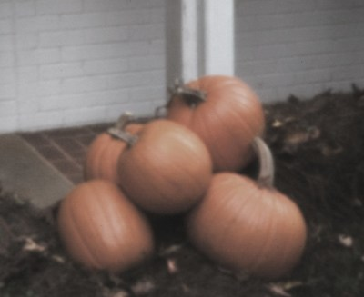 pinhole pumpkins orton desaturated