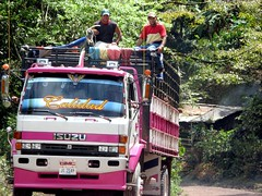 Camion de ganado