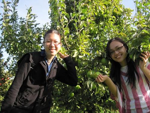 Melissa & Myra plucking green apples