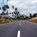 Bintan Roadway 1st