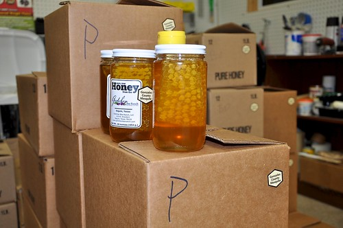 comb honey 2011