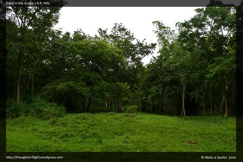BRHills-Landscape2