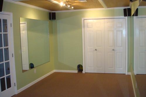 Home Gym  - Cat Closet