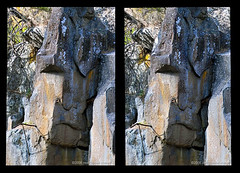 Old_man_of_the_river___3D