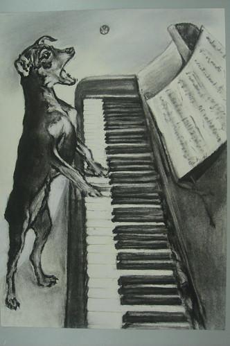秀珠_快樂彈琴的小狗