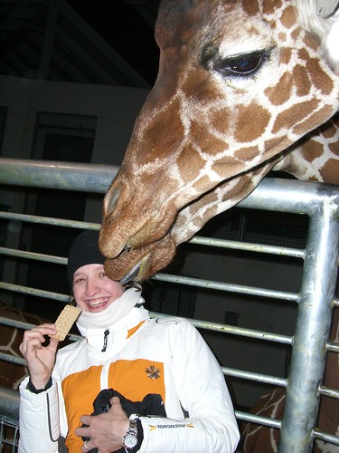 me and giraffe