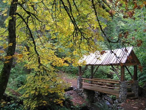 Day 10 - Oregon Caves Trail Bridge