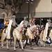 Pasadena Rose Parade 2008 07
