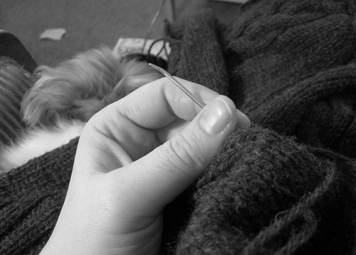 Seaming of the CPH with Dog 02