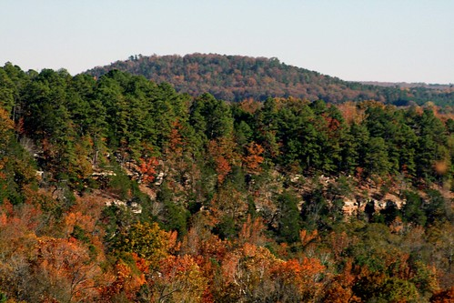 fall follage looking out over cliff in northern white county by tonisdale.