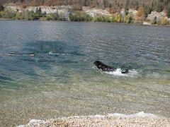 balade lac des Brenets