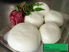 Mozzarella di bufala DOP by Flyingmozzarella