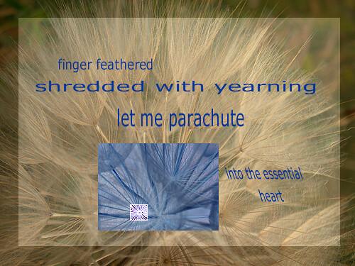 A.viary.com 4 - Parachute Poem