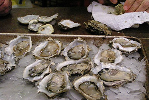 shucking oysters II