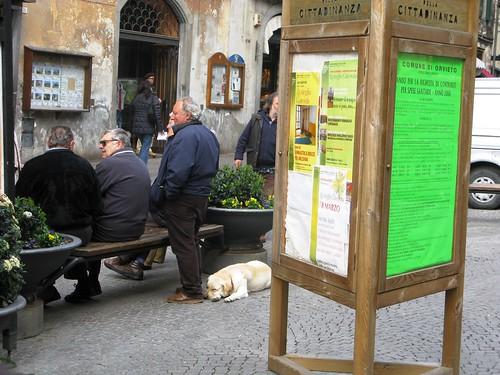 Tuckered, Orvieto