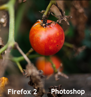 Firefox2-Photoshop-Split