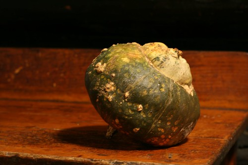 A dessert or kabocha winter squash