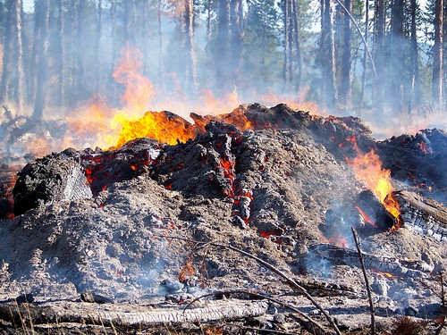 Slash pile fire