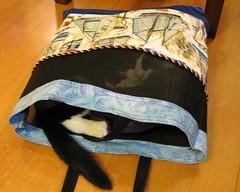 Oliver in Knitting Bag