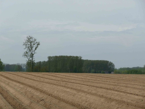 omgeploegd veld