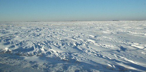 The solemn beauty, and quiet violence, of winter on the Canadian Plains..
