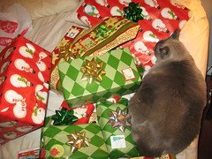 xmas wrapping 052