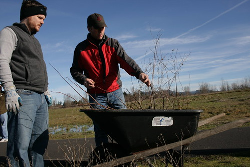 Trout Unlimited Tree Planting