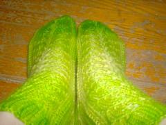 Something's Shady Socks - Dyed (top)
