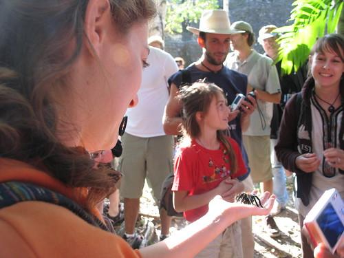 Jess with tarantula