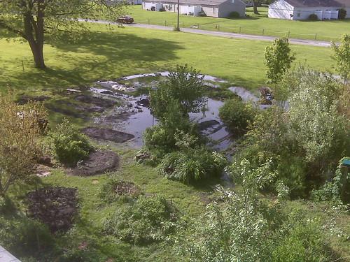 Water logged garden