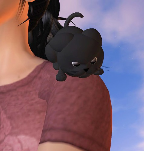 Mean Black Kitty 2