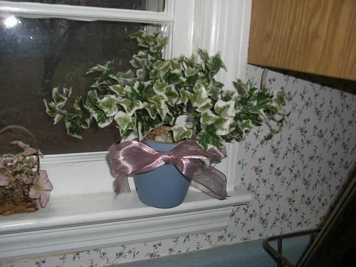 Hidden nest arrangement