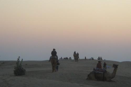 騎駱駝1-81