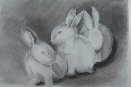 善如_小白兔