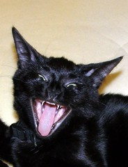 080217 evil laugh